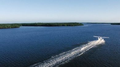 Photo of Visiter les 10 000 Islands des Everglades