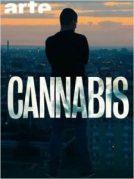 La série cannabis arrive aux Etats-Unis sur Netflix.