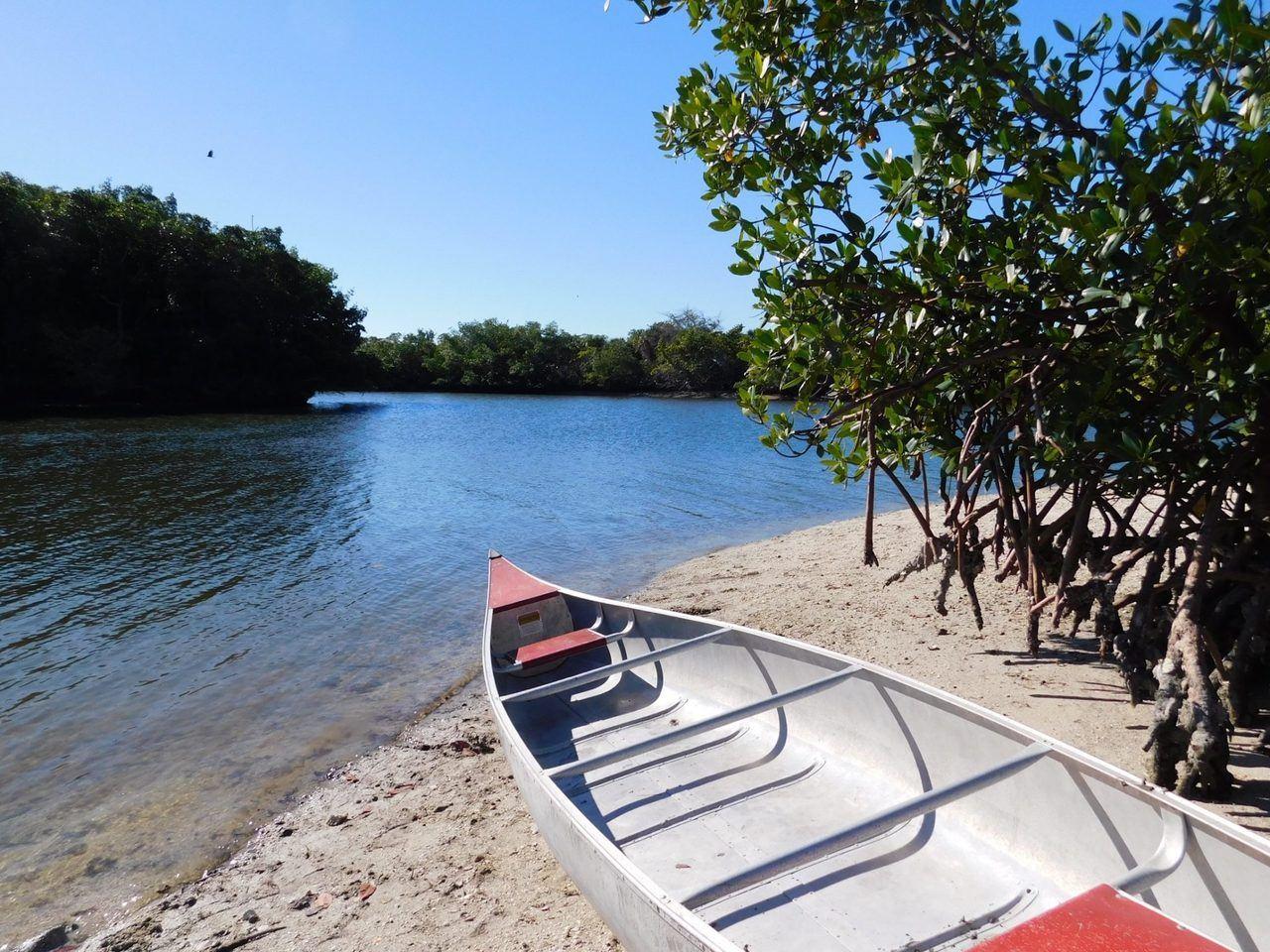 Canoë à Lovers Key en Floride