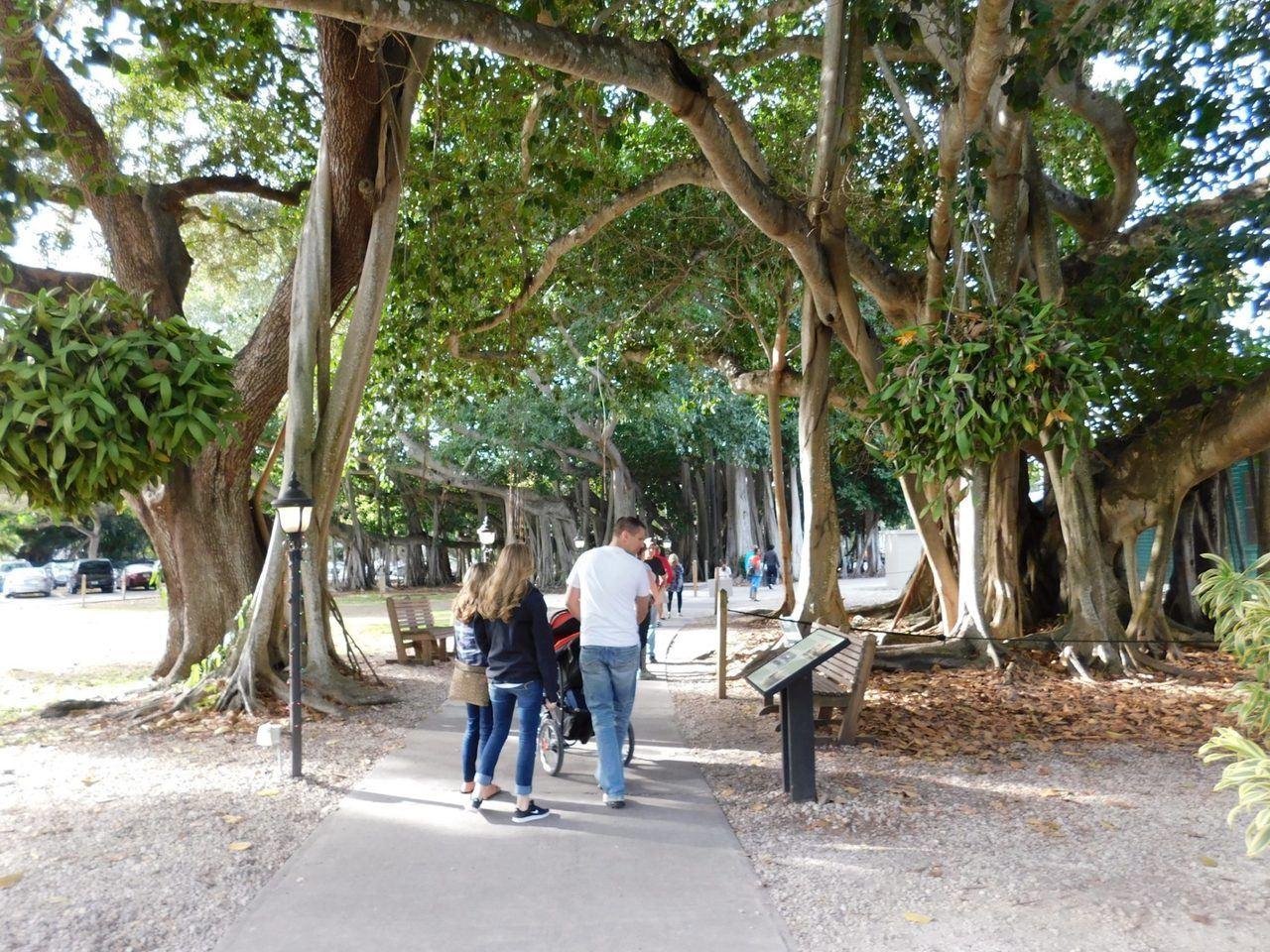 Edison & Ford Winter Estates (leurs maisons d'hiver à Fort Myers en Floride)