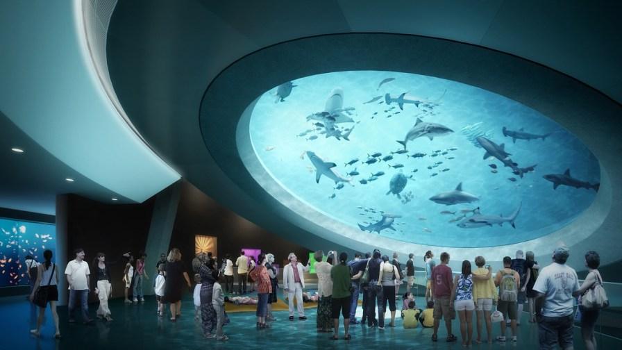 Mezzanine de l'aquarium