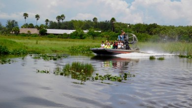 Photo of Everglades : Les meilleurs tours en airboat / visites en hydroglisseur