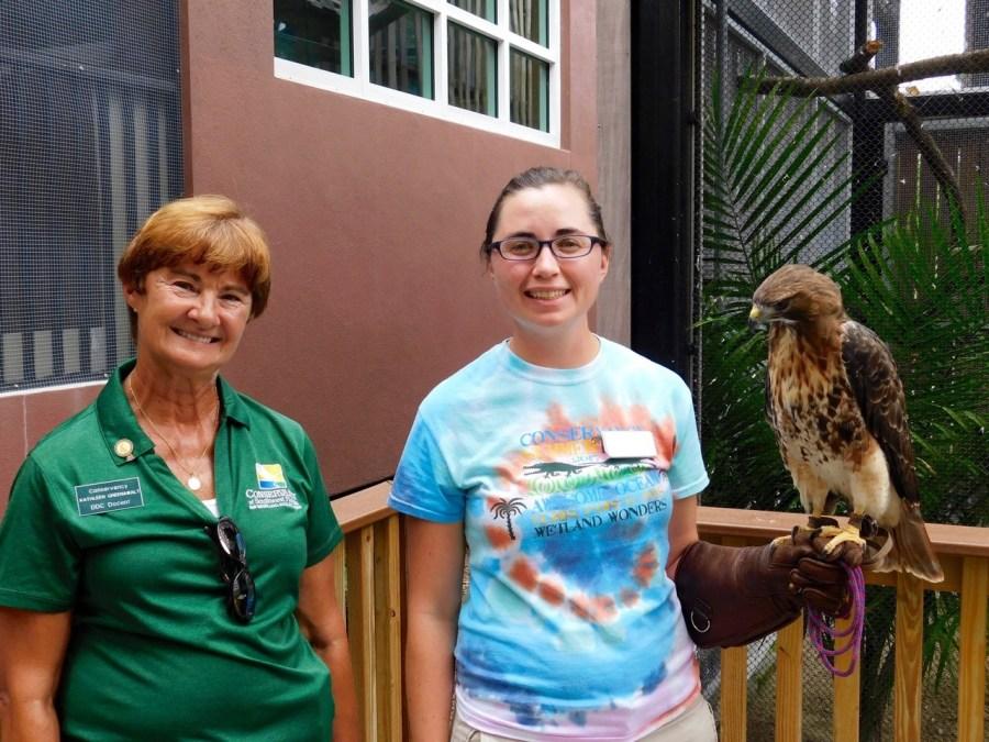 Kathleen, Plover et Horation (magnifique buse à queue rousse) au Conservacy of Southwest Florida à Naples en Floride