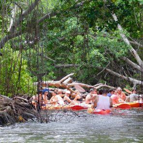 Excursions snorkeling et Kayak à Key West avec les bateaux de Fury Waters.