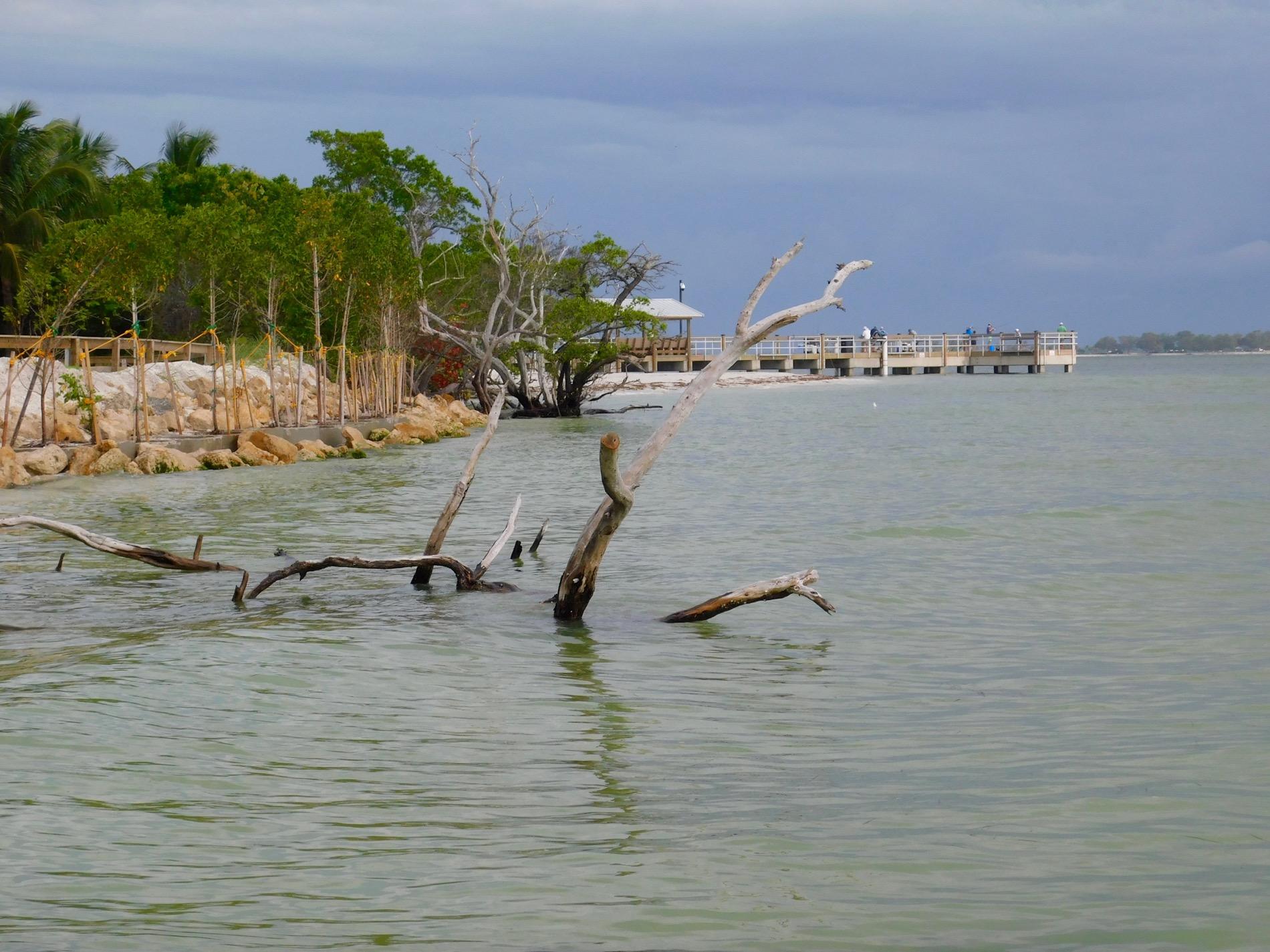 Plage de Sanibel Island Lighthouse Beach Park (Floride)