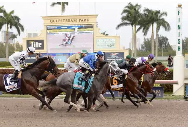 Florida Derby à Hallandale en Floride