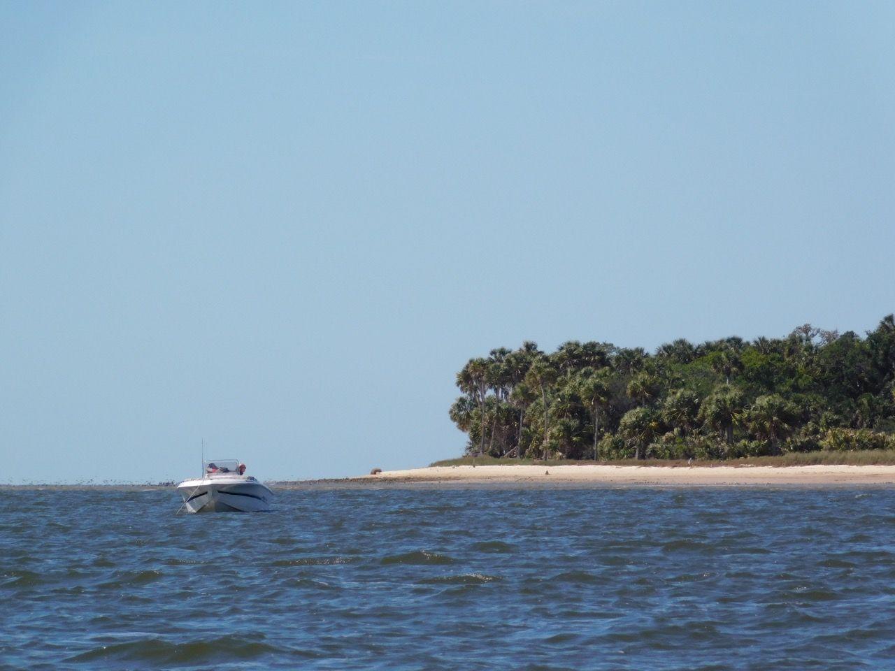 Seahorse Key, une île sauvage près de Cedar Key en Floride