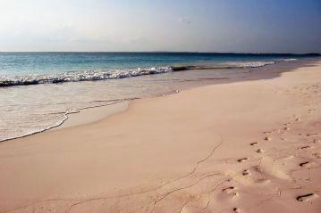 Bahamas Harbour Island Pink Sand Beach