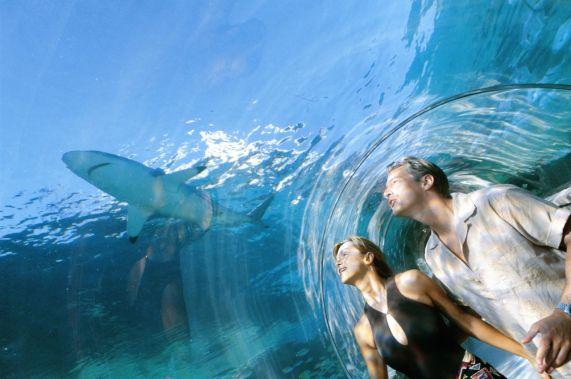 Bahamas Paradise Island Atlantis