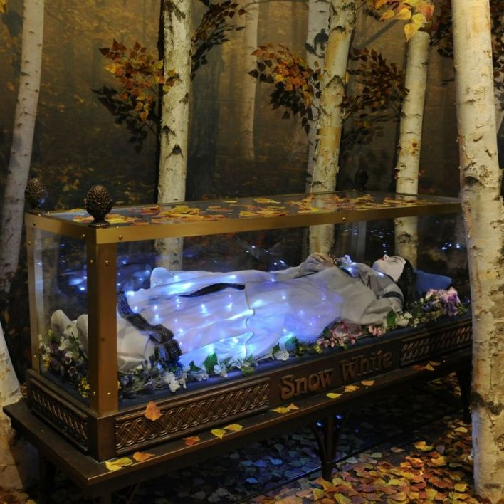 Expo Le Pouvoir du Poison au musée Frost de Miami