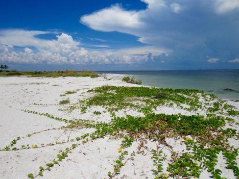 La plage du phare de Boca Grande, sur Gasparilla Island, sur la côte ouest de la Floride