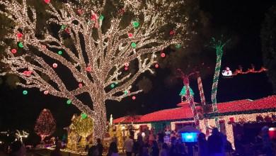 Photo of Pompano Beach : Les décorations de Noël de la Sixth Street en photo et vidéo