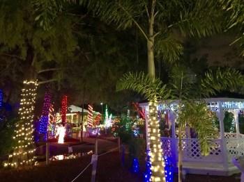 Hoffmans-chocolate-factory-lake-worth-Palm-Beach-decorations-illuminations-noel-7418