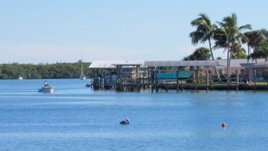 Photo of Englewood, la Lemon Bay et Manasota Key (guide de la Floride)
