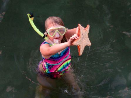 Etoile de mer géante des Bahamas à Riviera Beach en Floride