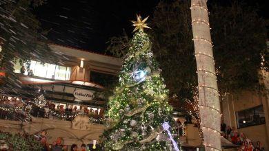 Photo of Les soirées de lancement des illuminations de Noël 2019 en Floride du sud