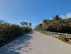 Le fameux broadwalk de Hollywood : plusieurs kilomètres pour se promener à pieds ou en vélo, dans des parties commerçantes ou naturelles.