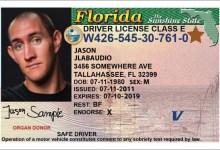 Photo de Le permis de conduire aux Etats-Unis