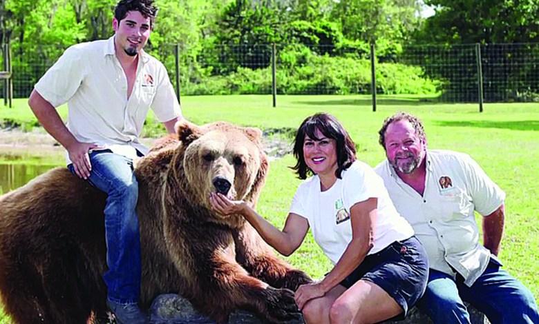 13 ours domestiques dans le jardin