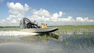 Visiter les Everglades : marais, airboats, alligators et indiens seminoles