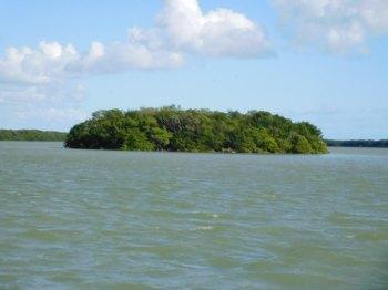 Key dans la Florida Bay à Flamingo -Everglades national Park)