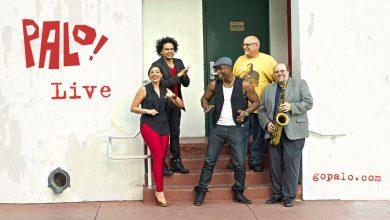 Photo de Palo! : la musique afro-cubaine de Miami !