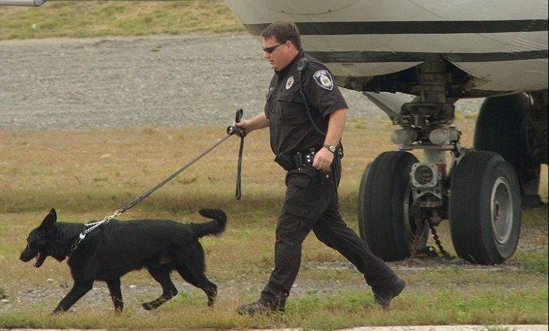 Un agent de la TSA