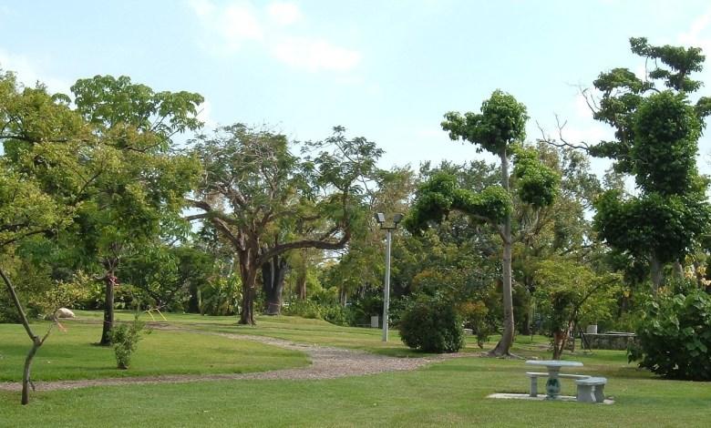 Gifford Arboretum de l'Université de Miami.
