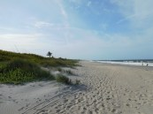 Hobe Sound National Wildlife Refuge / Floride