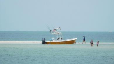 Photo of Louez (facilement) un bateau pour visiter la côte Sud-Ouest de la Floride !