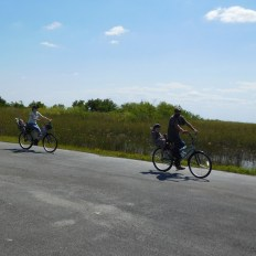 Vélo à Shark Valley / Parc National des Everglades