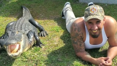 Photo of Joli reportage sur un homme de Miami et son ami alligator