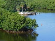 Parc de Weedon Island à St Petersburg, Floride