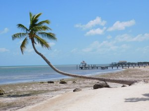 The Moorings, Islamorada, Keys de Floride