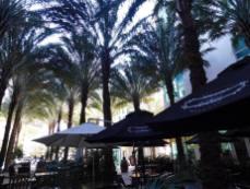 Amour de Miami, restaurant français à Brickell