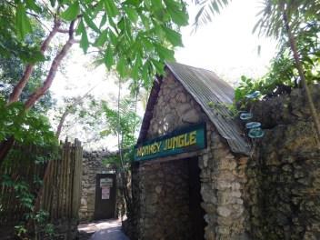 Monkey Jungle (à Homestead, au sud de Miami)