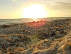 Coucher de soleil sur la plage de Marco Island en Floride