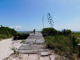 Île d'Egmont Key au large de St Petersburg en Floride