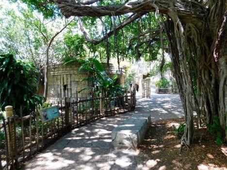 Zoo de Palm Beach en Floride