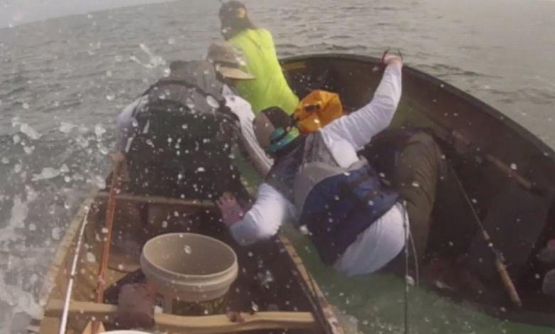 Vidéo : Un requin-bouledogue en colère attaque des canoës à Key West