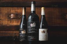 Cabral bouteilles vins et portos 4