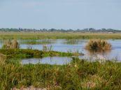 Le Lac Okeechobee à Lake Port (en Floride)