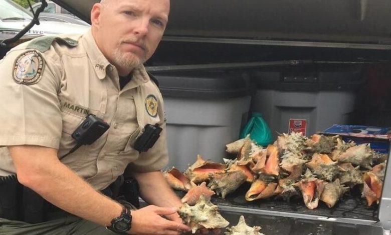 C'est l'agent John Martino de la Florida Fish and Wildlife Conservation Commission (FWC) qui l'a interpellée après avoir été prévenu par un passant.