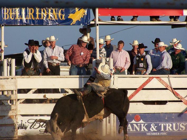 Rodéo : le Bull Riding aux Etats-Unis