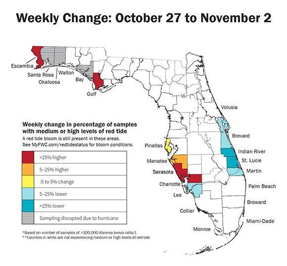 Red tide croissance et décroissance en Floride