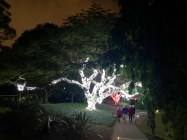 Les illuminations de Noël au Mounts Botanical Garden de West Palm Beach