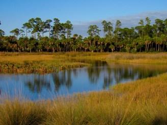 Okeeheelee Park de West Palm Beach en Floride