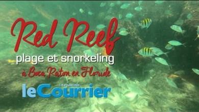 Photo of Snorkeling sur la plage de Red Reef à Boca Raton (vidéos de la Floride)