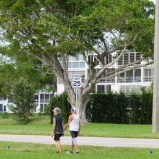 Le Century Village de Deerfield Beach en Floride : une gated community pour les plus de 55 ans