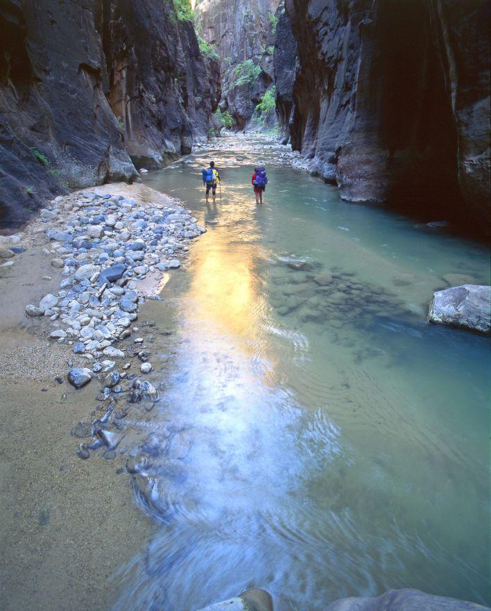 La Virgin River dans le Zion National Park